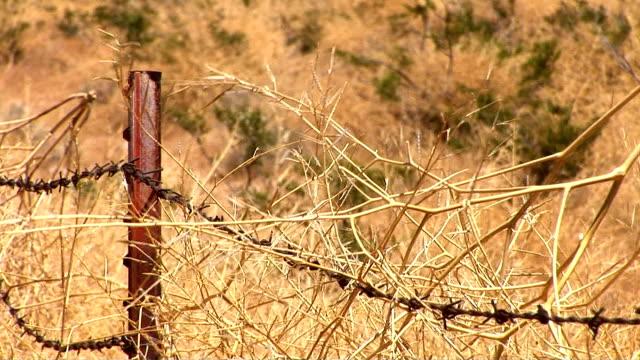 vidéos et rushes de barb wire fence - poteau en bois