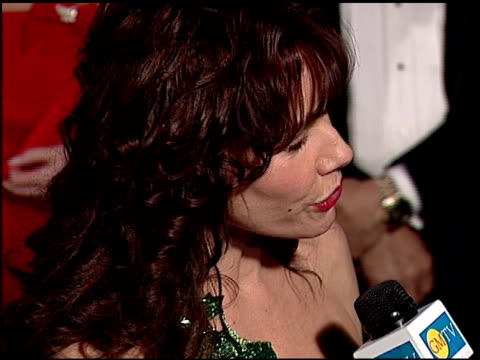 barbara hershey at the 1997 academy awards vanity fair party at the shrine auditorium in los angeles, california on march 24, 1997. - 69th annual academy awards stock videos & royalty-free footage