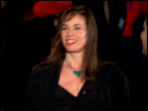 barbara hershey at the 'interview with the vampire' premiere at the mann village theatre in westwood california on november 9 1994 - レジェンシービレッジシアター点の映像素材/bロール