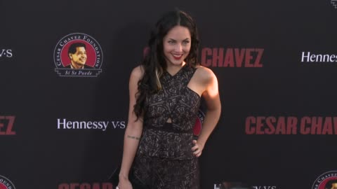 """barbara mori - """"cesar chavez"""" los angeles premiere at tcl chinese theatre on march 20, 2014 in hollywood, california. - tcl chinese theatre stock videos & royalty-free footage"""