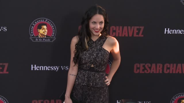 """barbara mori - """"cesar chavez"""" los angeles premiere at tcl chinese theatre on march 20, 2014 in hollywood, california. - 格朗曼的中國劇院 個影片檔及 b 捲影像"""