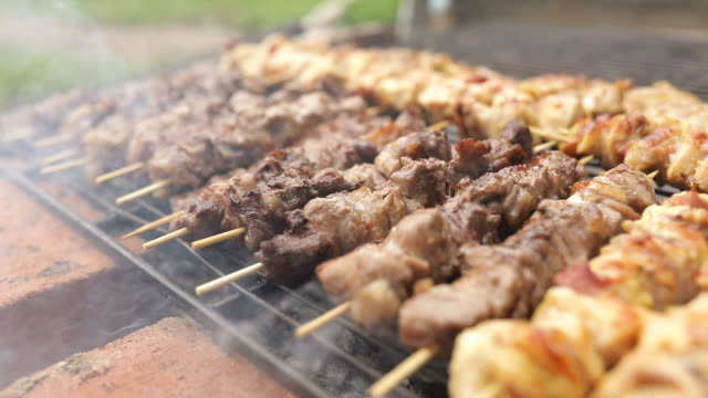 barbecue chicken beef and pork gril - kebab stock videos and b-roll footage