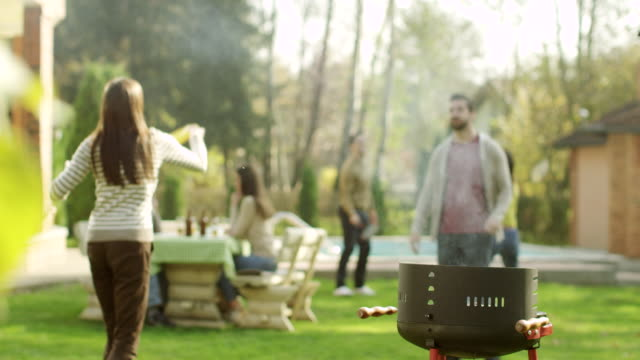 barbecue party - lawn stock videos & royalty-free footage