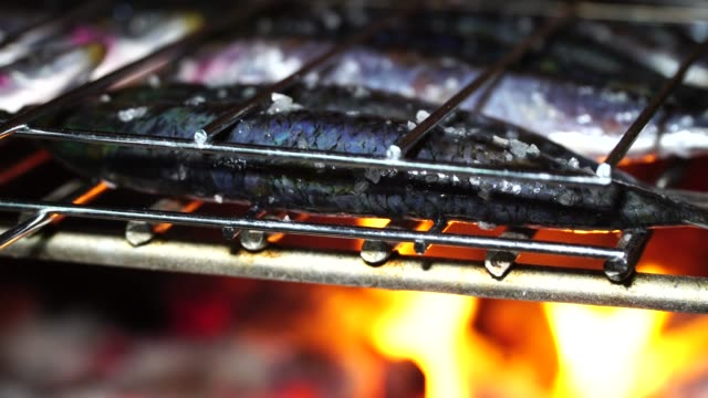 barbecue sardines - fish meal stock videos & royalty-free footage