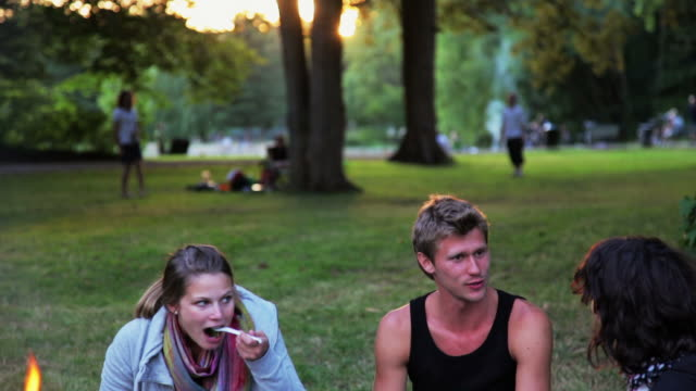 stockvideo's en b-roll-footage met barbecue - picknick