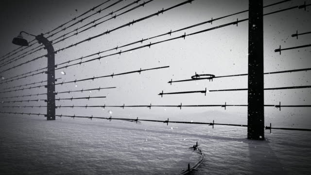 barbed wire fence  of the prison - concentration camp stock videos & royalty-free footage