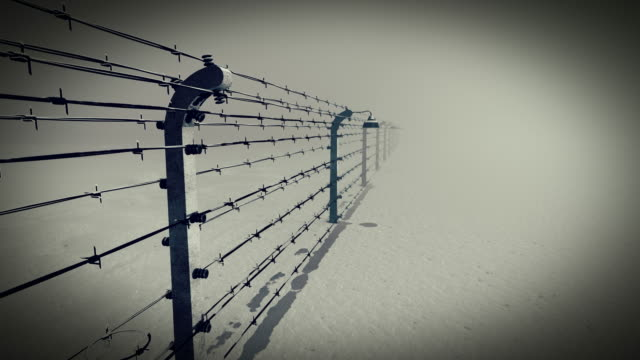 barbed wire fence  of the prison - the past stock videos and b-roll footage