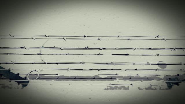 vídeos de stock e filmes b-roll de barbed wire fence  of the prison - homem e máquina