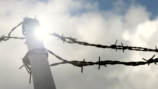 barbed wire in europe - boundary stock videos & royalty-free footage