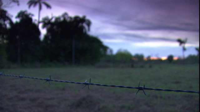 a barbed-wire fence stretches across a field on a ranch. - stacheldraht stock-videos und b-roll-filmmaterial