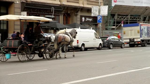 barcelona catalonia street - arbetsdjur bildbanksvideor och videomaterial från bakom kulisserna