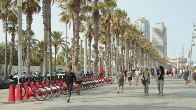 barcelona promenade at barceloneta district with bikes public service and palm trees - promenade stock videos & royalty-free footage