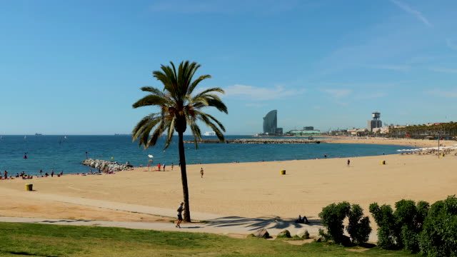 vidéos et rushes de barceloneta beach, barcelona, spain - spain