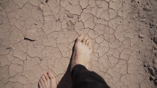 bare feet of man on the dry land of the sahara desert - sand bildbanksvideor och videomaterial från bakom kulisserna