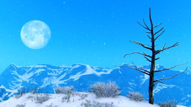kahler baum gegen mond und verschneiten bergen - bare tree stock-videos und b-roll-filmmaterial