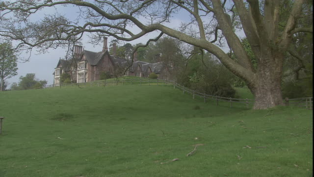 stockvideo's en b-roll-footage met bare tree branches frame the culver house up on a hillside. - bare tree