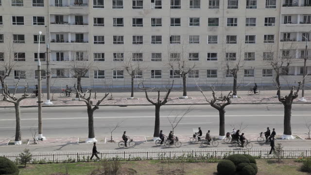 Bare trees tower over pedestrians in Pyongyang.