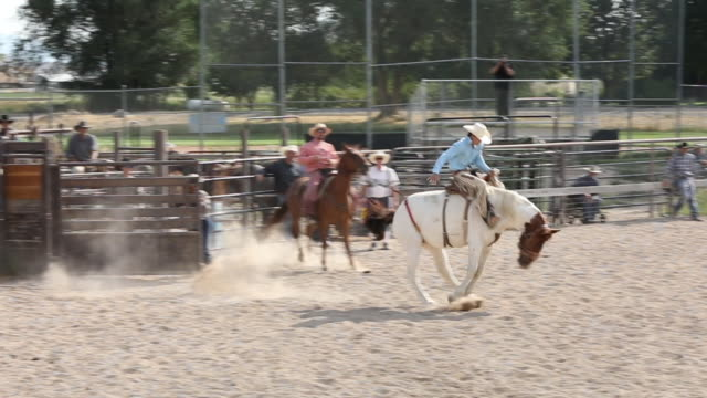 bareback rodeo slow motion - recreational horse riding stock videos and b-roll footage