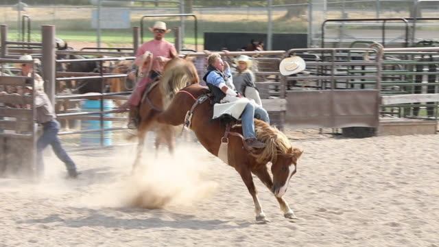 stockvideo's en b-roll-footage met bareback rodeo slow motion - recreatief paardrijden