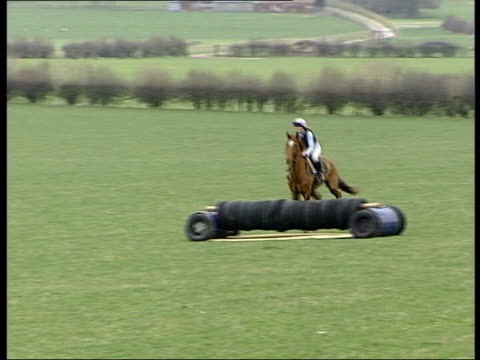 stockvideo's en b-roll-footage met wiltshire warminster racehorse 'saucy night' not wearing horseshoes jumping over fences during training pan ms saucy night trotting towards with v/o... - john mccririck