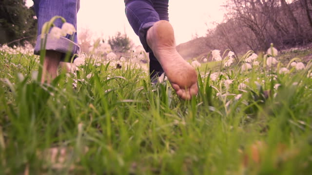 hd super slow-mo: barefoot walking through spring meadow - barefoot stock videos & royalty-free footage
