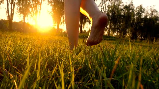 草の上を歩いて裸足の女 - 人の脚点の映像素材/bロール