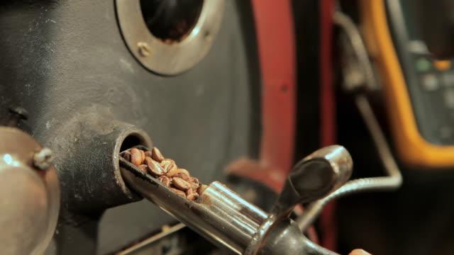 barista grinding coffee beans - solo un uomo di età media video stock e b–roll