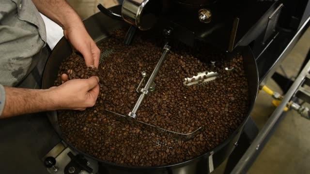 vidéos et rushes de barista torréfaction grains de café crus - artisant