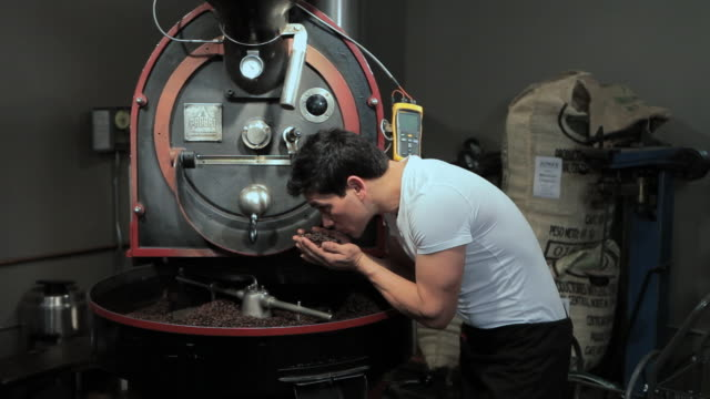 Barista smelling coffee beans