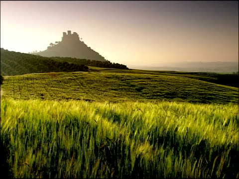 barley and castle, andalucia, spain - andalucia stock videos & royalty-free footage