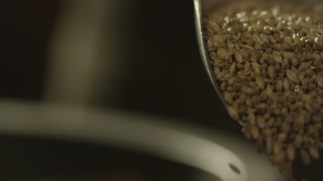 barley kernels falling into vat - orzo video stock e b–roll