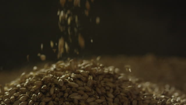 barley seeds falling from scoop onto a pile - smoothie stock videos & royalty-free footage