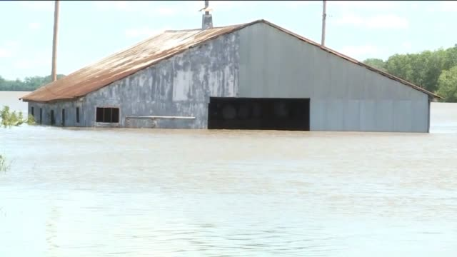 KTVI Barn and Plants Submerged in Flood Water in Alton Illinois after heavy rainfall on May 5 2017