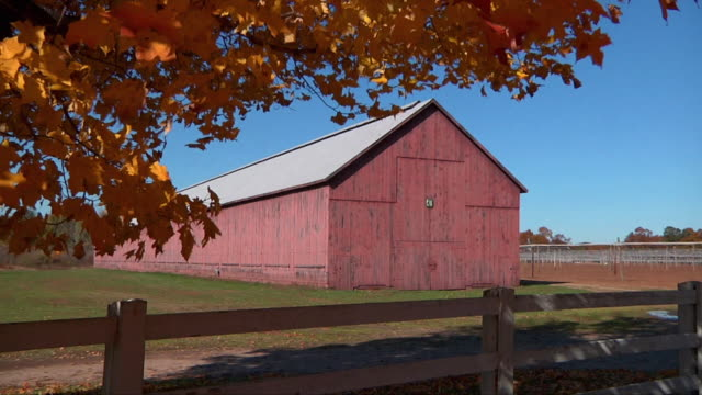 ws zi barn in tobacco field with fence / windsor, connecticut, usa - barn stock videos and b-roll footage