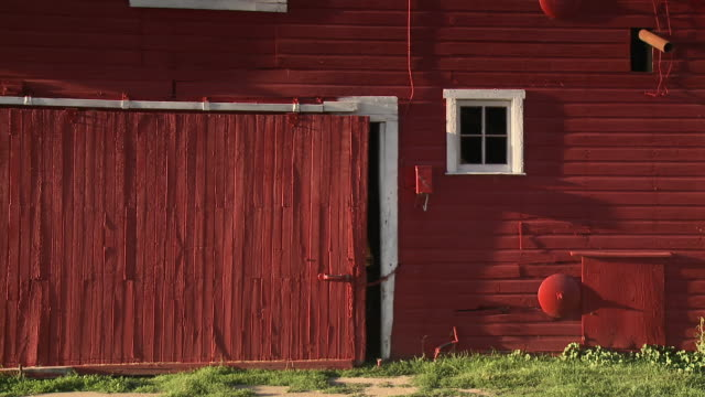 a barn on a farm - barn stock videos & royalty-free footage