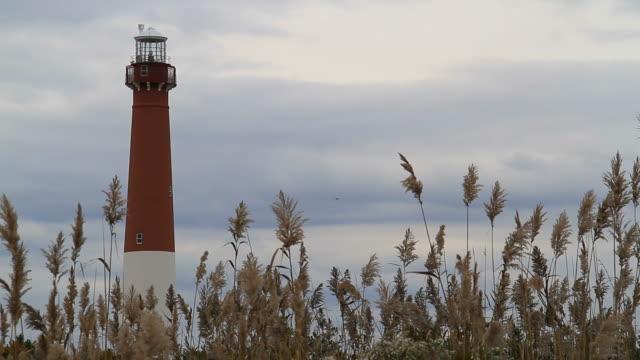 barnegat lighthouse - marram grass stock videos & royalty-free footage