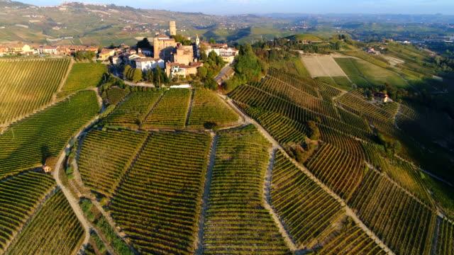 barolo vineyards in autumn, piedmont, italy - piemonte video stock e b–roll