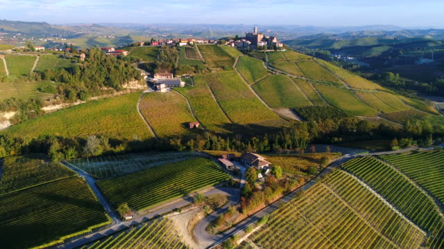 Barolo Vineyards in autumn, Piedmont, Italy