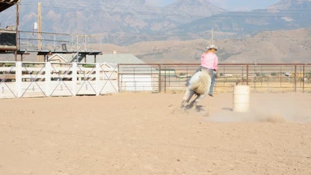 vídeos de stock, filmes e b-roll de competência cowgirls num rodeio empoeirado do tambor - barril