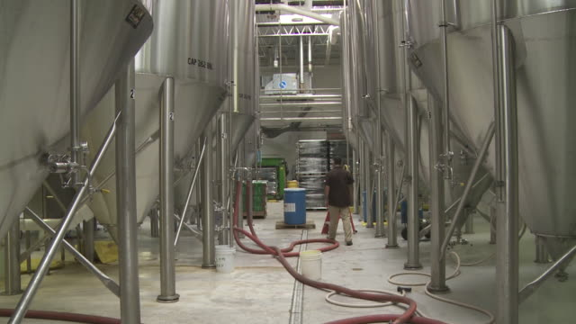 barrels for brewing beer testing beer - dogfish stock videos & royalty-free footage