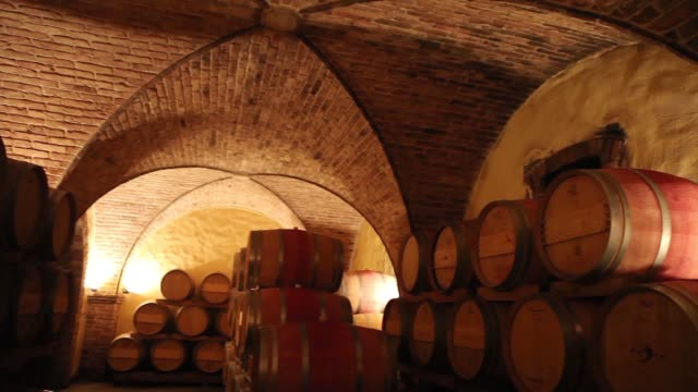 barrels in a wine cellar at the skoff winery in gamlitz, südsteiermark, austria - viniculture stock videos & royalty-free footage