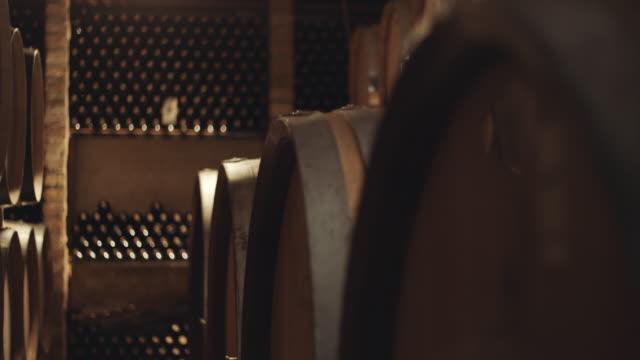 barrels in wine cellar - vino video stock e b–roll