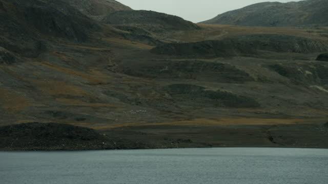 barren coast of somerset island canada - northwest passage stock videos and b-roll footage