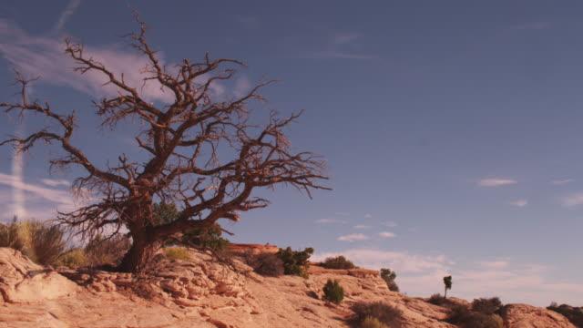 Barren landscape in Arches National Park