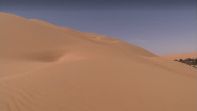 Barren sand dunes surround a desert oasis. Available in HD.