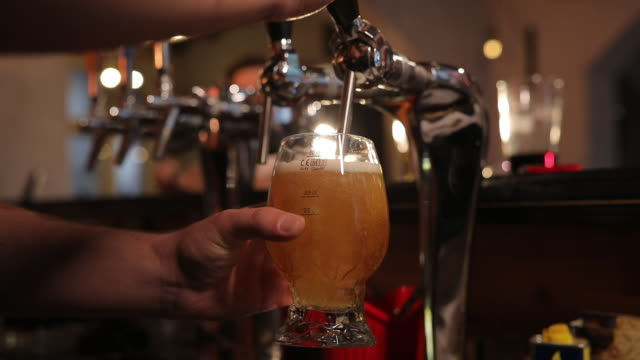 bartender pouring beer - keg stock videos and b-roll footage