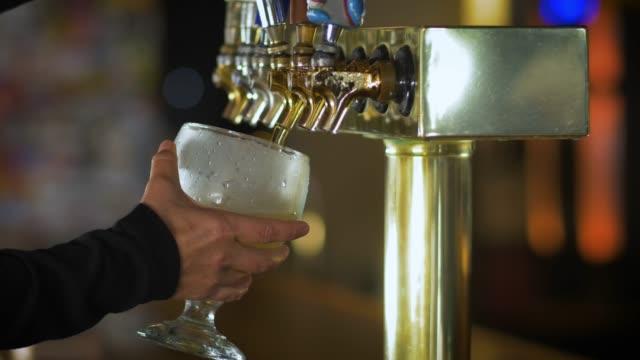 bartender gießt bier - after work stock-videos und b-roll-filmmaterial