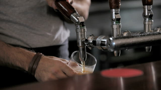 Bartender pours a draught beer in a pub