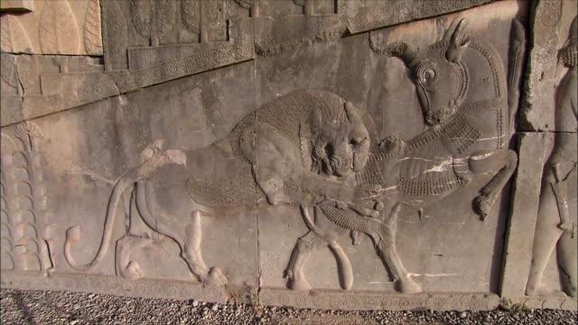 ms bas relief depicting fighting animals, persepolis, iran - bas relief stock videos & royalty-free footage