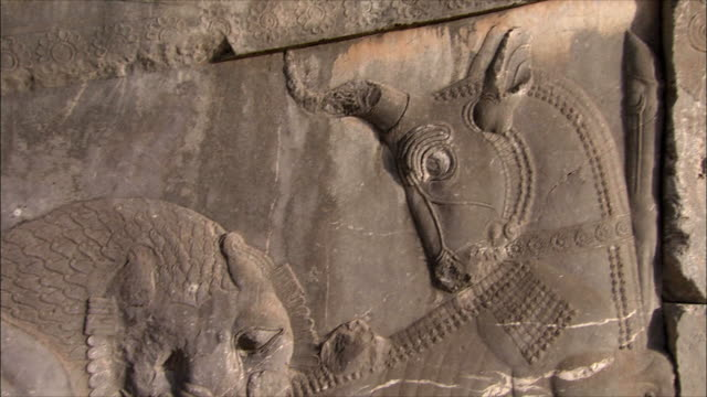 vidéos et rushes de cu pan bas relief depicting fighting animals, persepolis, iran - civilisation ancienne